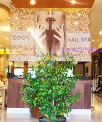 Coco Nail & Spa